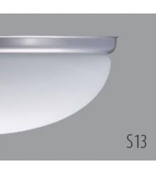 ALMA D2-S13